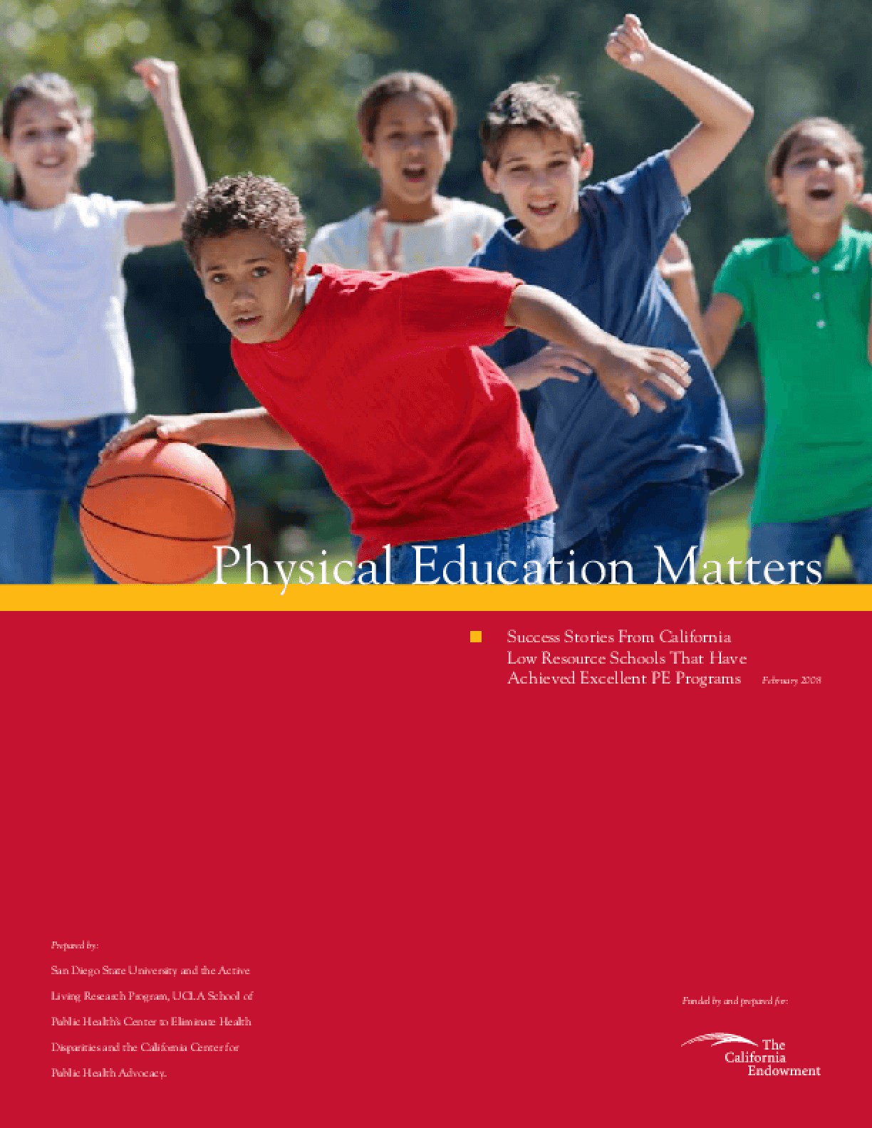 physical education in schools pdf